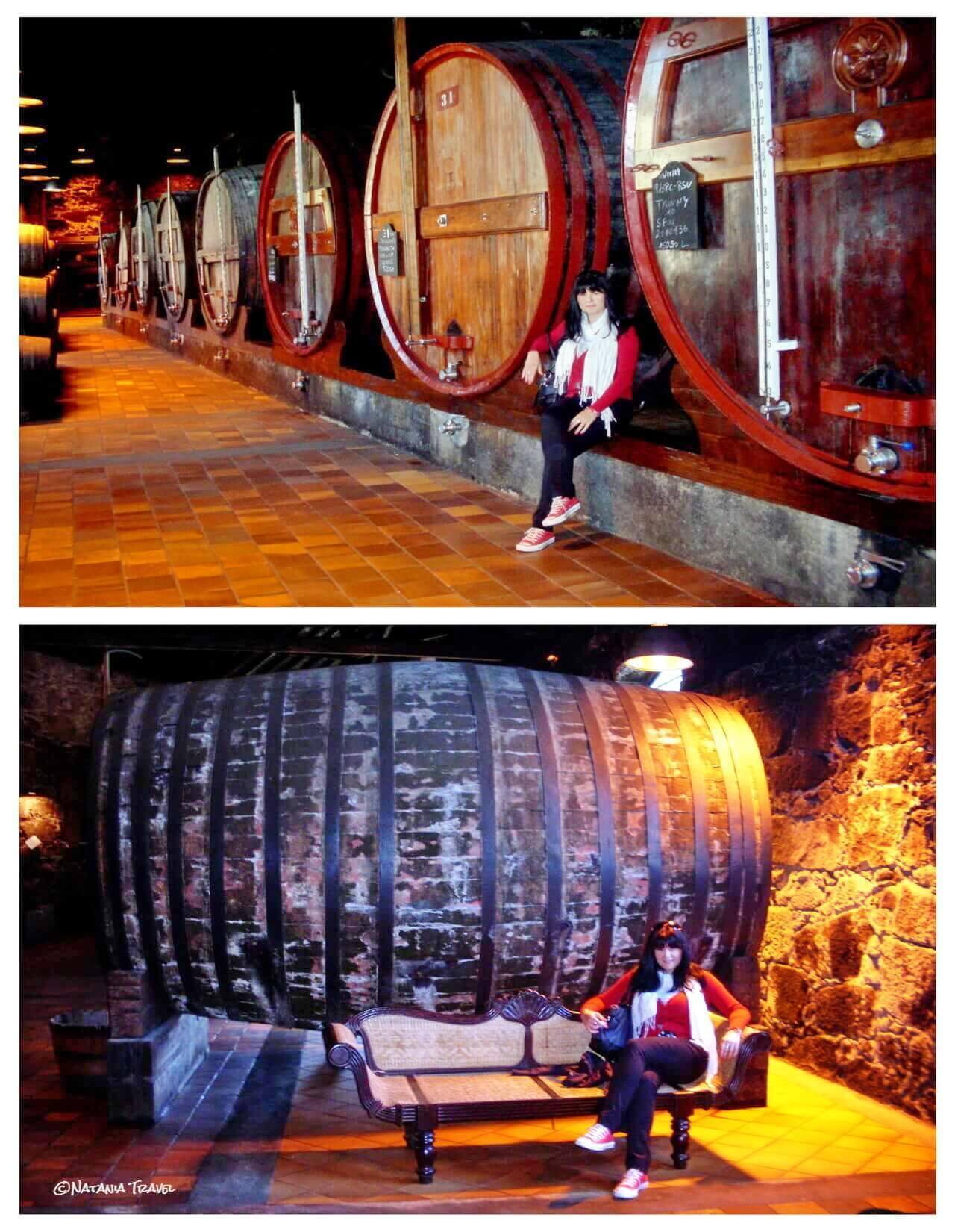 Burmester winery