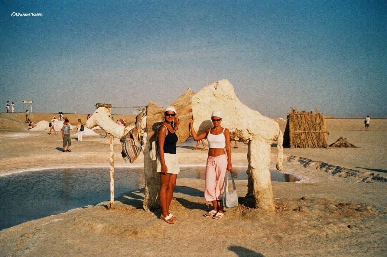Chott El Jerid, salt camel, Sahara