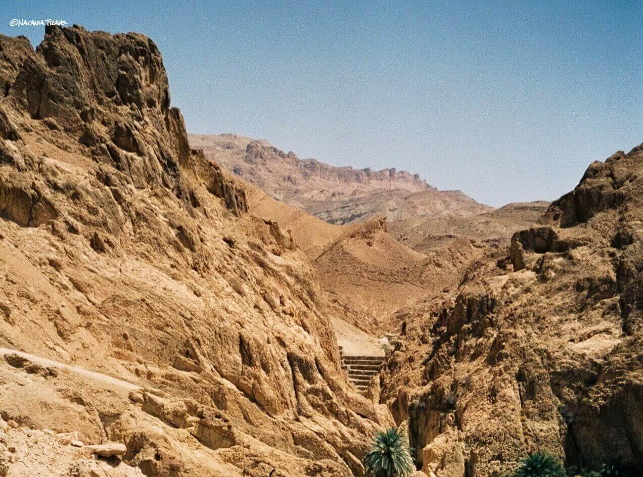 Chebika oasis in Sahara desert