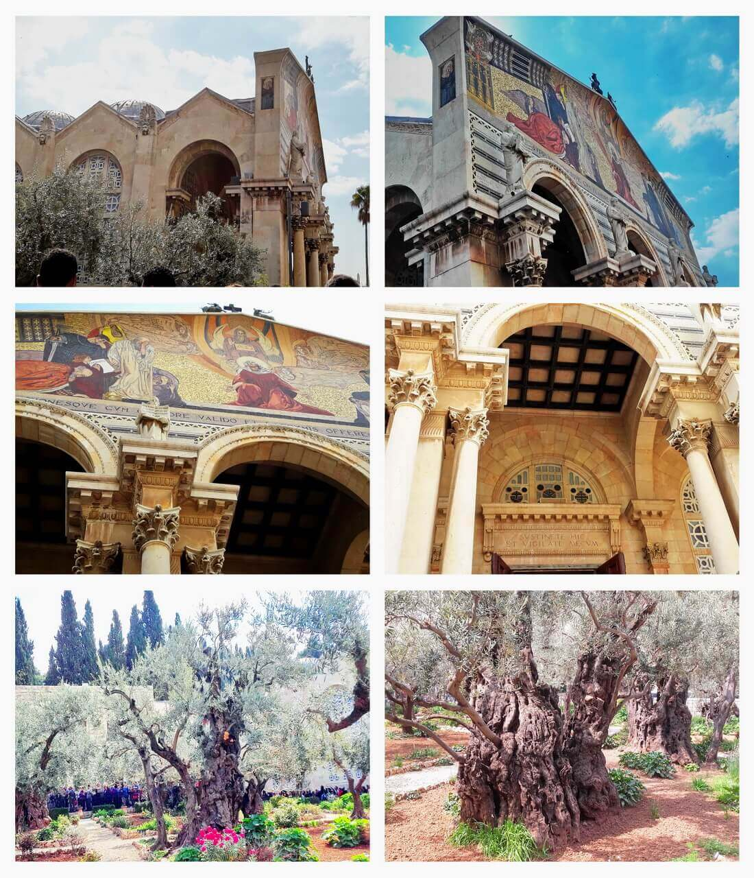 Jerusalem, the Garden of Gethsemane, and the Church of All Nation