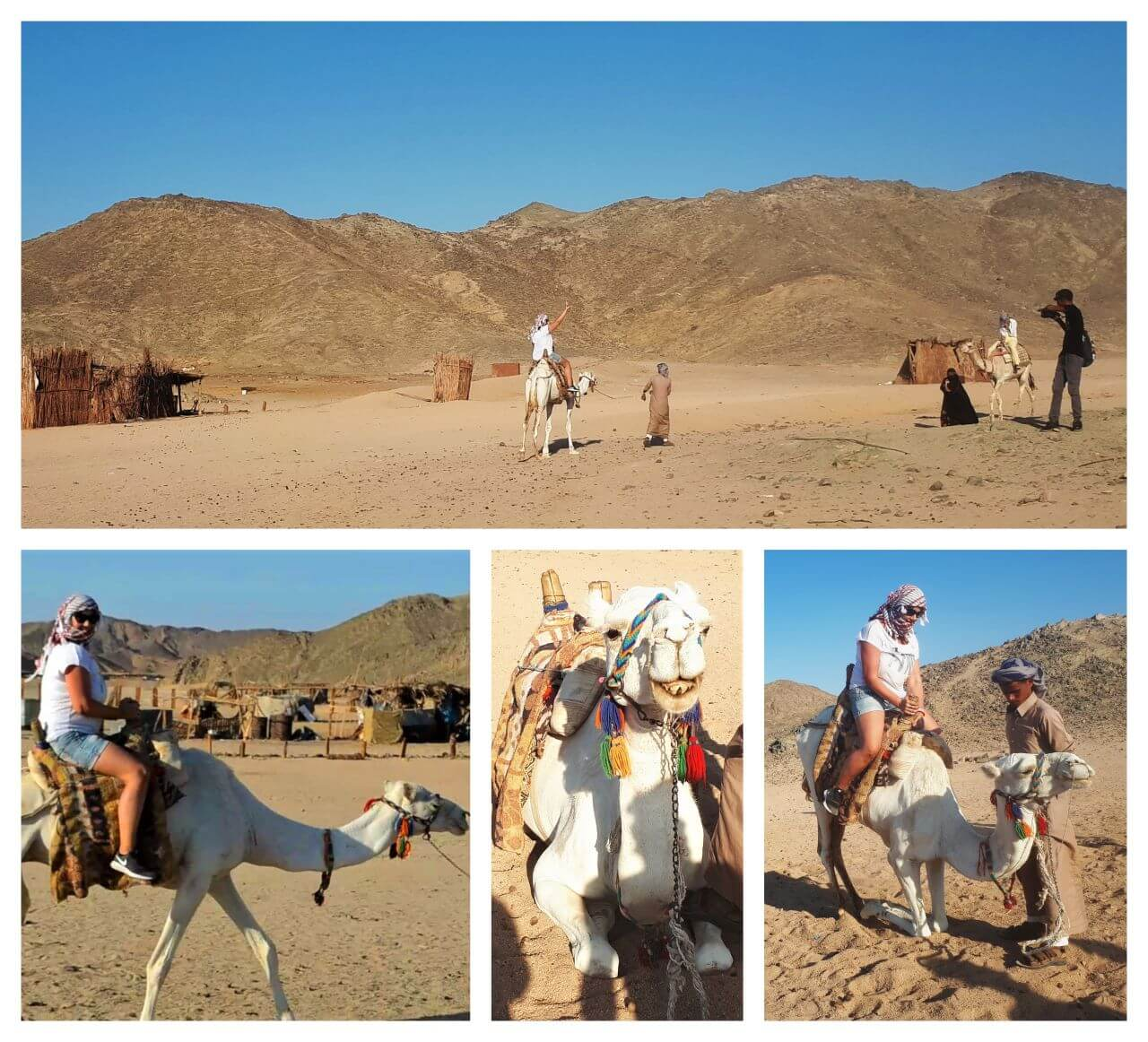 Riding camels, Hurghada Bedouin village