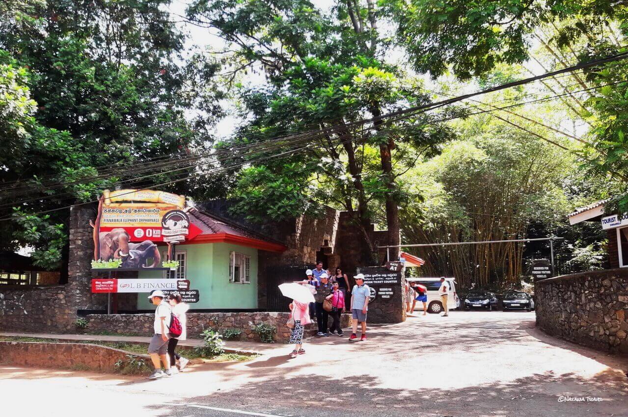 Entrance in Pinnawala Elephant Orphanage