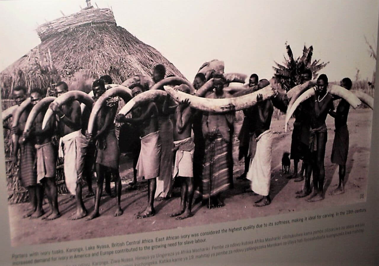 Slaves carry ivory, Zanzibar