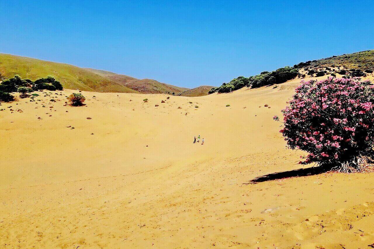 Ammothines desert, Lemnos