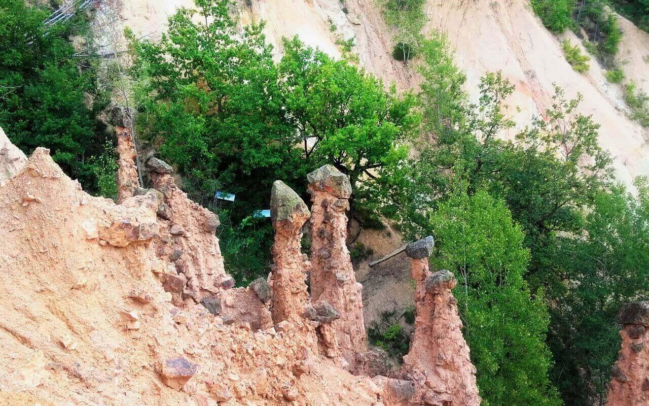 Cups on soil pillars